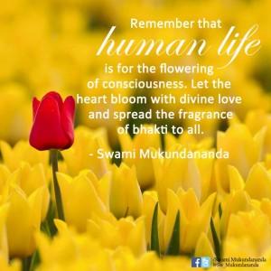 Swami Mukundananda - Quotation-24
