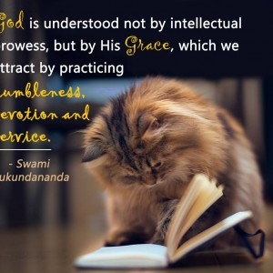 Swami Mukundananda - Quotation-30